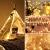 [120 LED] Lichterkette Kugel, 12M 8 Modi und Merk Funktion,lichterketten außen/innen mit Stecker, ideale party deko, kinderzimmer, balkon,weihnachtsbeleuchtung usw. (Warmweiß) - 4