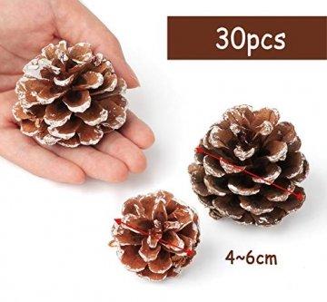 Anstore 30 Tannenzapfen KIeferzapfen Schwarzkiefern Zapfen Kiefernzapfen Tanne Naturzapfen Weihnachtsdeko Adventsdeko Pine Cones, 4-6 cm - 3