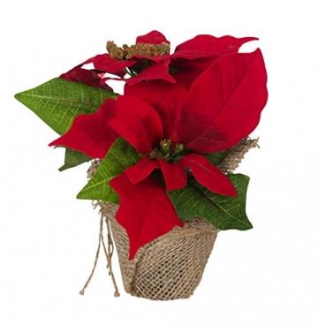 Bambelaa! 3 StückWeihnachtsstern künstlich Fenster naturgetreu Weihnachten Dekoration Weihnachtsdeko (Rot) - 2