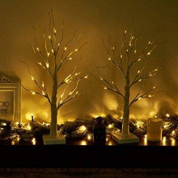 EAMBRITE 2er Set Lichterbaum Lichterzweige für Innen 24 Warmweiß LEDs Bäumchen Birken Dekozweige Batteriebetrieb Weihnachtsdeko für Zuhause Party Geburtstag Hochzeit Innendekoration (60cm/2ft) - 2