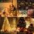 Elegear Lichterkette Außen 100M 500 LEDs Warmweiß 8 Modi LED Weihnachtsbeleuchtung Strombetrieb Weihnachten Deko für Innen Außen Neujahr Weihnachtsbaum Geburtstag Feiertag Party Hotel Garten Hochzeit - 3