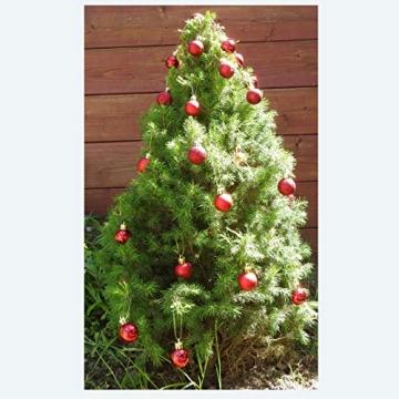 kleine Minni Dekokugeln Weihnachten Weihnachtskugeln Kugeln rot matt glänzend glitzernd 24 Stück 3,3cm rot - 2