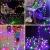 Lichterkette strombetrieben B-right 100 LED Globe Lichterkette, Lichterkette bunt, Innen- Außen Lichterkette glühbirne Fernbedienung,Weihnachtsbeleuchtung für Weihnachten Hochzeit Party Weihnachtsbaum - 4