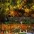 LED Lichterkettenvorhang Innen, Curtain Lights, Ramadan Dekoration 3,5 m, Star Moon Lichtervorhang, Girlande/dekorative Lichter für Hochzeit, Haus, Garten, Weihnachten, Fenstervorhang Dekoration - 2