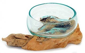 Wurzel mit Glasschale klein Schale Dekoschale Glas auf Holz Durchmesser 12-13 cm Holzdeko Teakholz Deko (Wurzel 17-20 cm) - 8