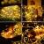 10M 100 LEDS Lichterschlauch, Eruibos LED Schlauch Außen mit Fernbedienung & Timer, IP65 Wasserdicht,8 Modi und Helligkeit dimmbar Lichterkette für Aussen, Weihnachtsbeleuchtung, Deko, Party - 2