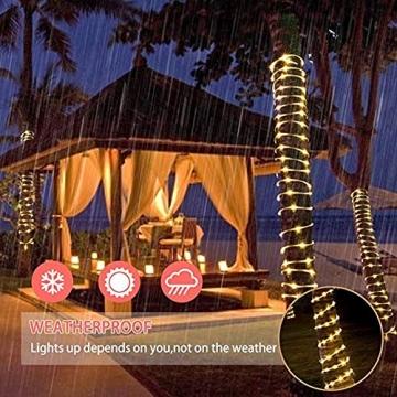 10M 100 LEDS Lichterschlauch, Eruibos LED Schlauch Außen mit Fernbedienung & Timer, IP65 Wasserdicht,8 Modi und Helligkeit dimmbar Lichterkette für Aussen, Weihnachtsbeleuchtung, Deko, Party - 3