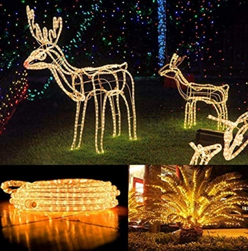 10M 100 LEDS Lichterschlauch, Eruibos LED Schlauch Außen mit Fernbedienung & Timer, IP65 Wasserdicht,8 Modi und Helligkeit dimmbar Lichterkette für Aussen, Weihnachtsbeleuchtung, Deko, Party - 5