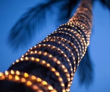 200 LED Schlauch Außen – Lichterschlauch Aussen 10m warmweiß mit Timer | Lichterkette Weihnachtsbeleuchtung wasserdicht | LED Lichtschlauch Außen 10m & Innen | Lichtschläuche Outdoor Leuchtschlauch - 4