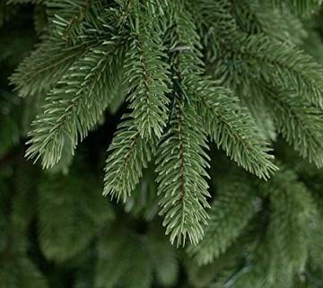 Evergreen Weihnachtsbaum Roswell Kiefer 210 cm künstlicher Tannenbaum Christbaum Kunstbaum Weihnachtsdekoration - 4