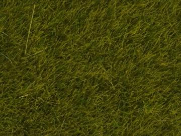 Noch 07100 - Wildgras Wiese, 6 mm - 2