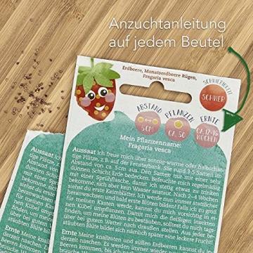 Saatgut Anzuchtset mit Holzkiste und 8 Sorten Pflanzen Samen: Kinder Anzuchtset Pflanzen mit Gemüse Samen, Erdbeeren Samen und Kräuter Samen – Mini Gewächshaus und Mini Garten Starter Kit von OwnGrown - 5