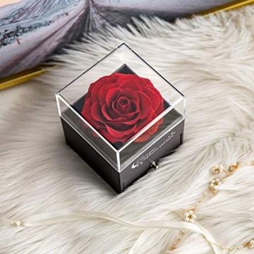 Yamonic Echte Rose mit Liebe Sie Halskette Schmuck Geschenk für sie, Ewige Liebe Rose zum Valentinstag Muttertag Jubiläum Geburtstags Geschenk Geschenk für Frauen, Freundin, Frau, Mutter - Rot - 3