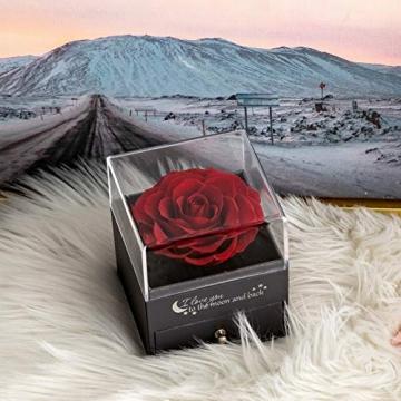 Yamonic Echte Rose mit Liebe Sie Halskette Schmuck Geschenk für sie, Ewige Liebe Rose zum Valentinstag Muttertag Jubiläum Geburtstags Geschenk Geschenk für Frauen, Freundin, Frau, Mutter - Rot - 5
