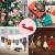 100 Stück Dekoklammern Weihnachten,Klammern Adventskalender,Wäscheklammern Holz Klein Weihnachten,Wäscheklammern aus Holz aus Holz,Weihnachten Klammern Holz Deko Klein,Miniklammern. - 4