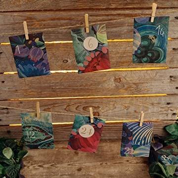 Bio-Saatgut-Adventskalender 2021 - Magische Zeit- Das Original von Magic Garden Seeds - Jubiläumsausgabe - befüllt mit 24 Bio-Samentütchen in schönem Design - 6